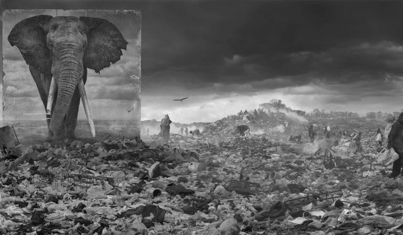 AG_Artist_NickBrandt_Inherit-the-Dust_22