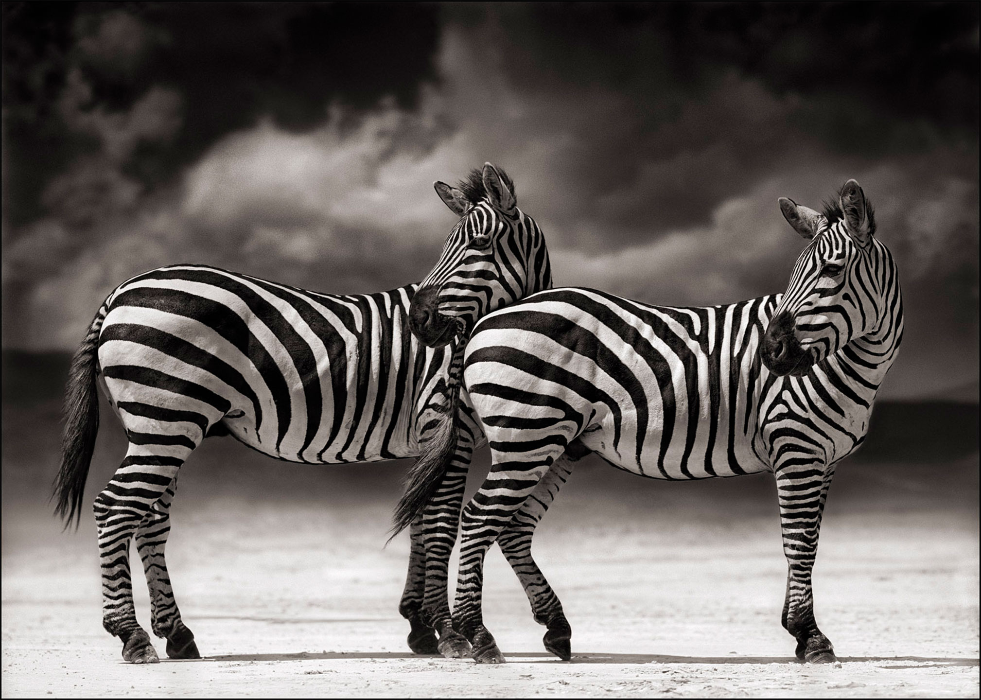 AG_Artist_NickBrandt_PreviousWork_10