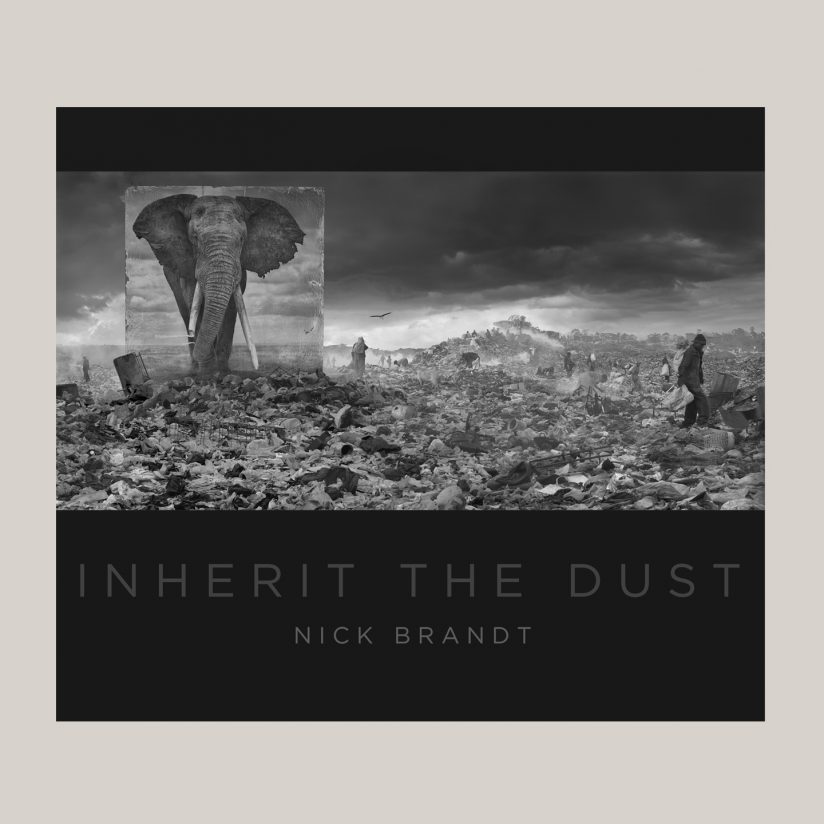 Nick_Brandt_Inherit-The-Dust