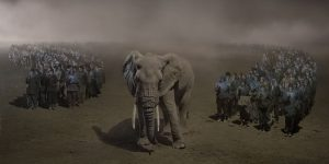 RIVER-OF-PEOPLE-WITH-ELEPHANT-AT-NIGHT Nick Brandt