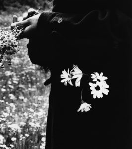 CK-Other-Story-Sunday-Picking-Daisies SAM HASKINS