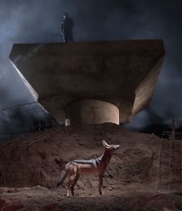 Nick Brandt, CONSTRUCTION-TRENCH-WITH-JACKAL-Atlas Gallery