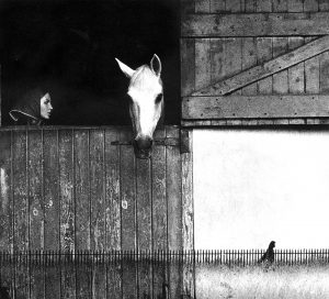 Sam Haskins November-Girl-Horse-Montage-Book-Spread