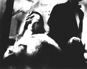 lillian-bassman-golden-fox-blue-fox-marilyn-ambrose-boa-by-frederica-harpers-bazaar-new-york-november-photographs-zoom_636_500