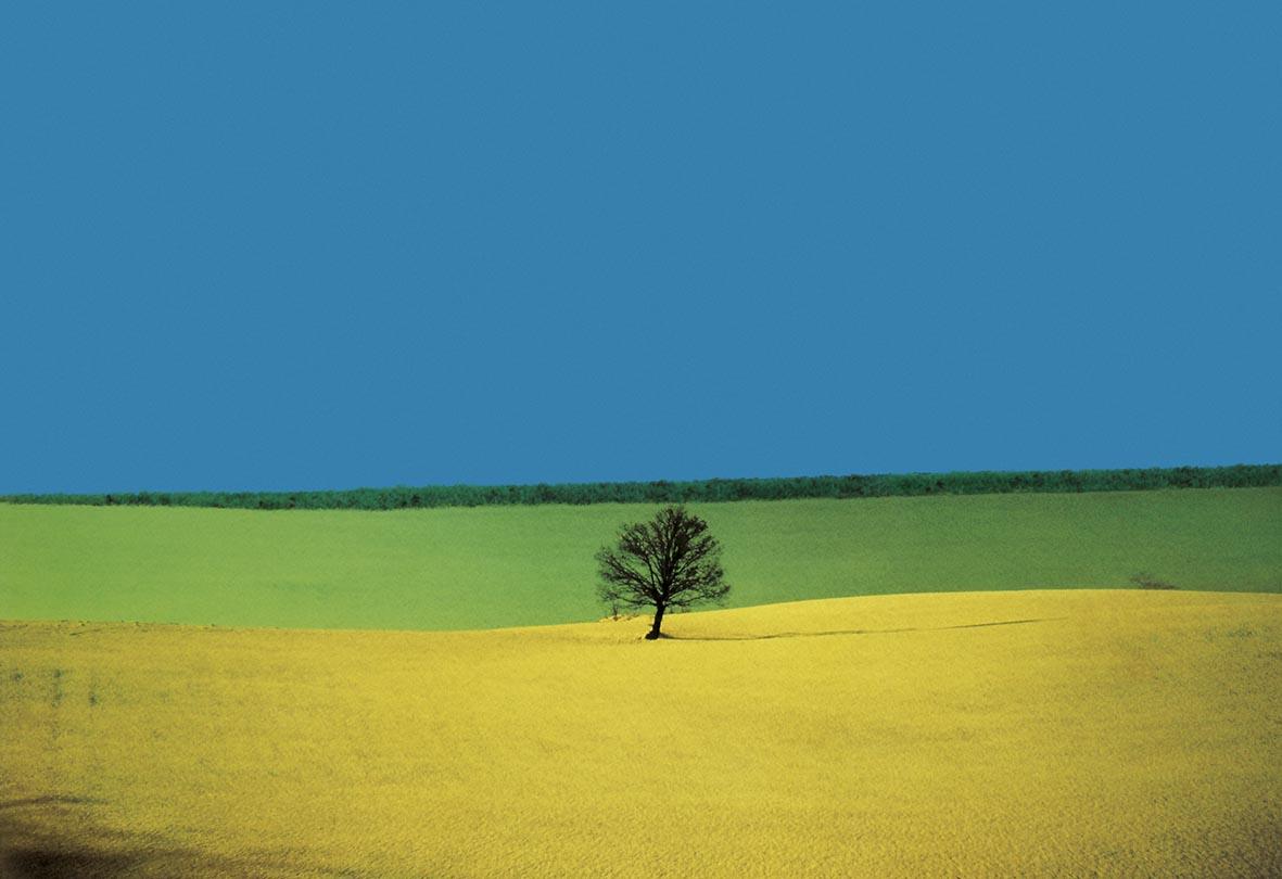 Landscape, Italy 1987 Fontana