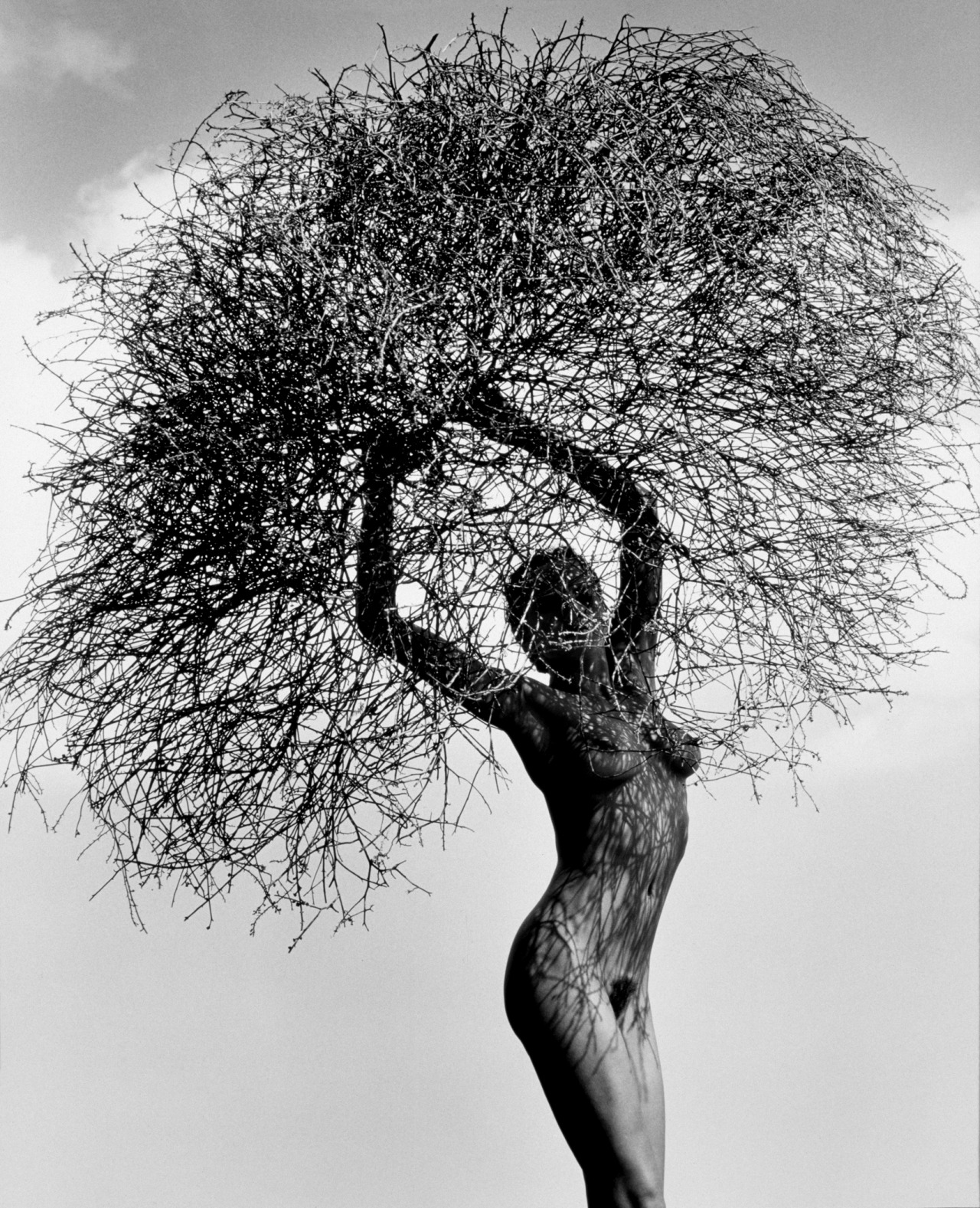 Herb Ritts - Neith With Tumbleweed