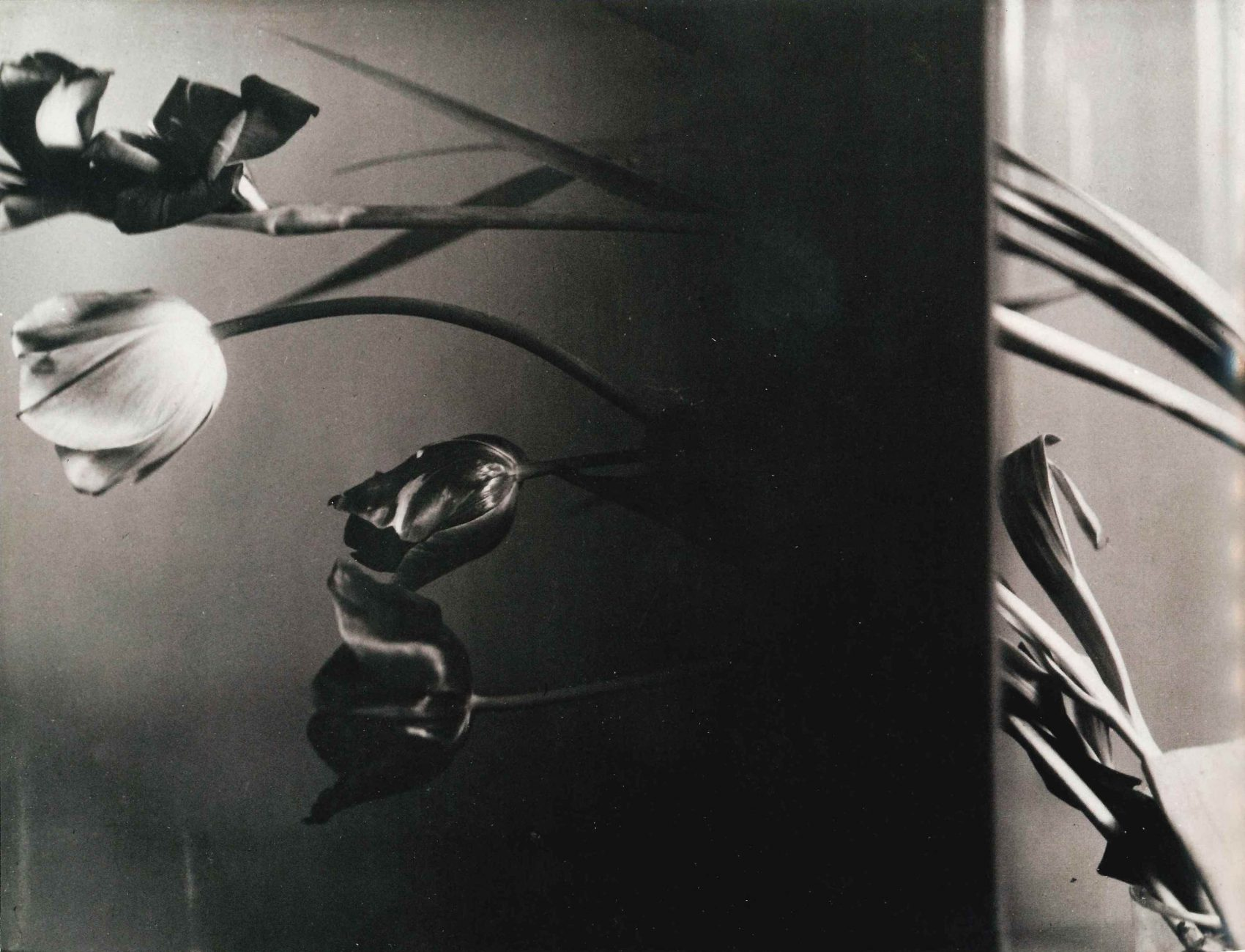Nature Morte 1931 (tulips)400 dpi