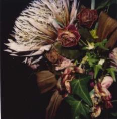 Flower, 2006-2009 Araki
